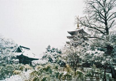 松戸市のおすすめ不用品回収業者5社は口コミが大評判!