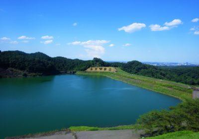 神奈川県相模原市の行政と不用品回収業者、どっちがお得?
