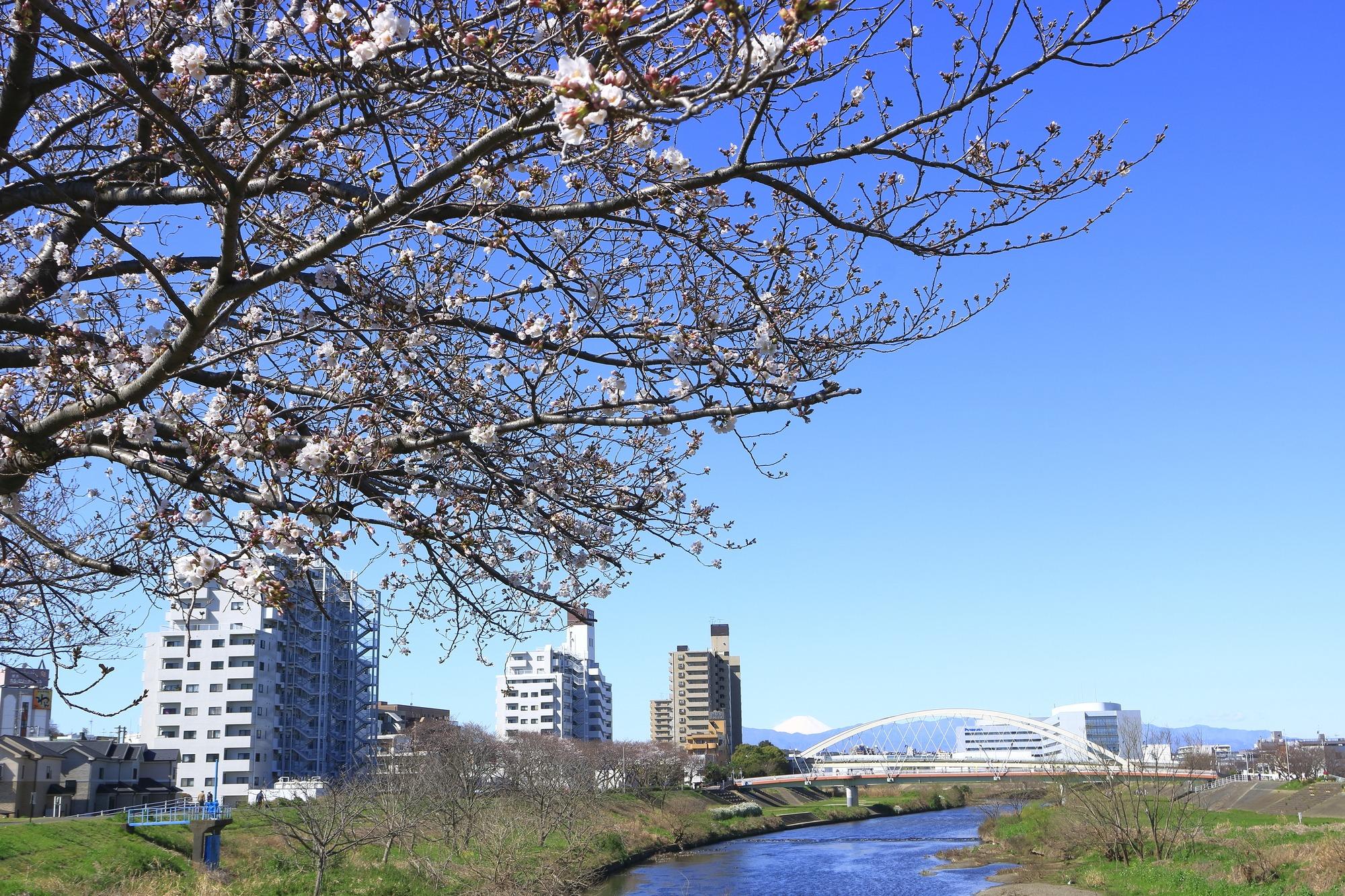 横浜市緑区で不用品回収業者探し!口コミ高評価でおすすめの業者5社を紹介!